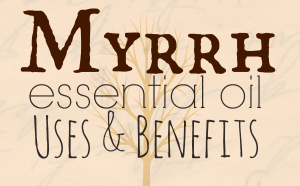 Myrrh Essential Oil: Benefits and Uses