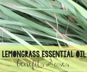 Benefits and Uses for Lemongrass Essential Oil