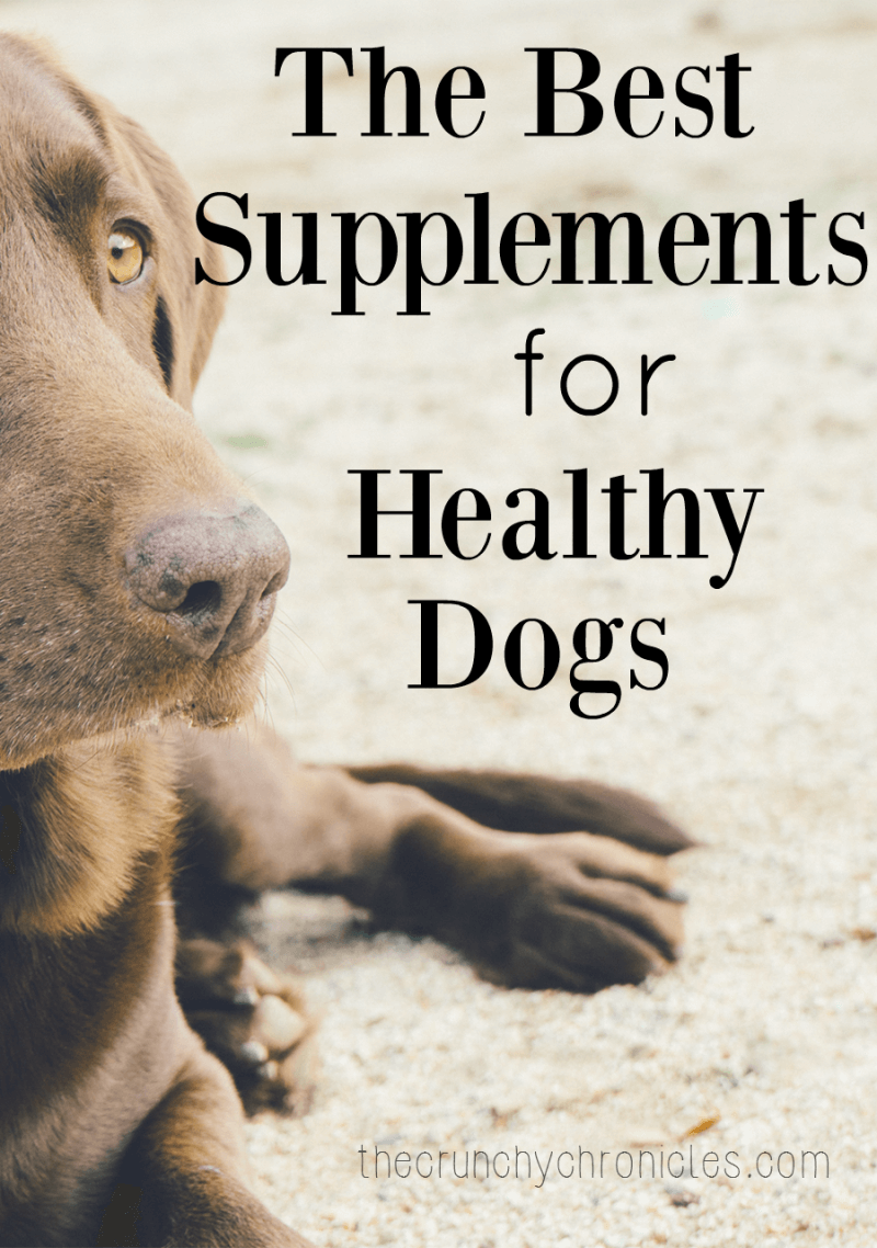 The best supplements for dogs for Can i give my dog fish oil